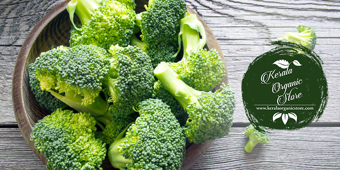 Top quality imported broccoli (Pyrozo) seeds For sale (Kerala)